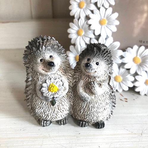 Cute Hedgehog Couple with Daisy Ornament
