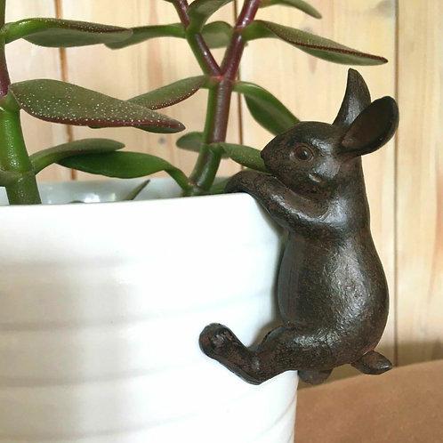 Hare Pot Hanger Gift Plant