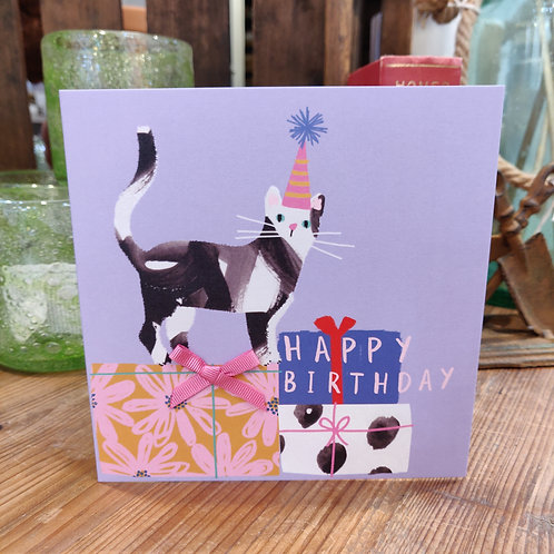Birthday Card Stop The Clock Designs Happy Birthday Cat