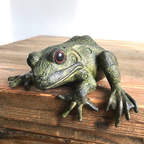 Franko The Fence Frog