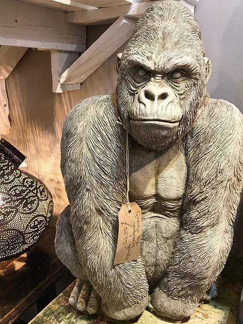 George The Gorgeous Gorilla