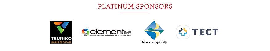 NPT7146 Waitangi Website Sponsor Update.