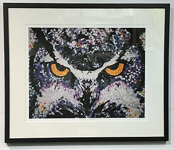 Face of Owl - LJThrostle.jpg
