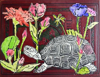 the-nicest-tortoise_50219929331_o.jpg