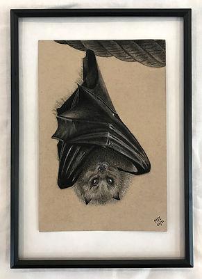 MI bat.jpg