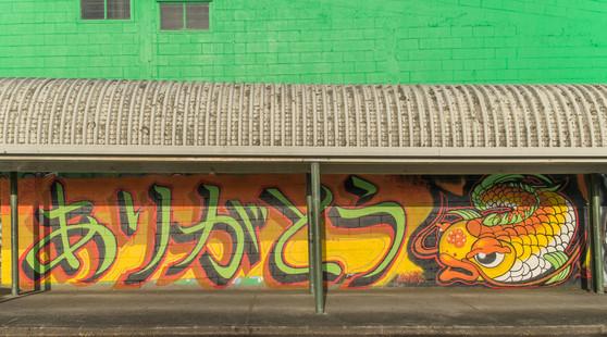 Demi next to the laundromat on Taniwha St, Glen Innes.  Photo: Brendan Kitto, 2015.