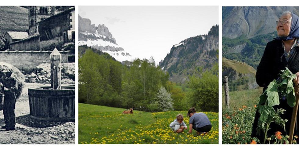 Balade ethnobotanique - Plantes sauvages et agriculture de montagne