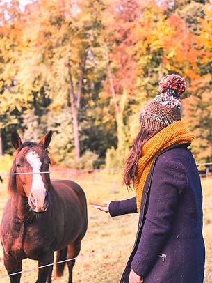 echarpe london avec cheval.JPG
