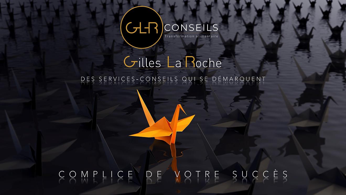 Document Gilles La Roche.png