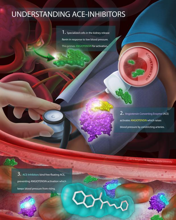 Molecular Poster.png