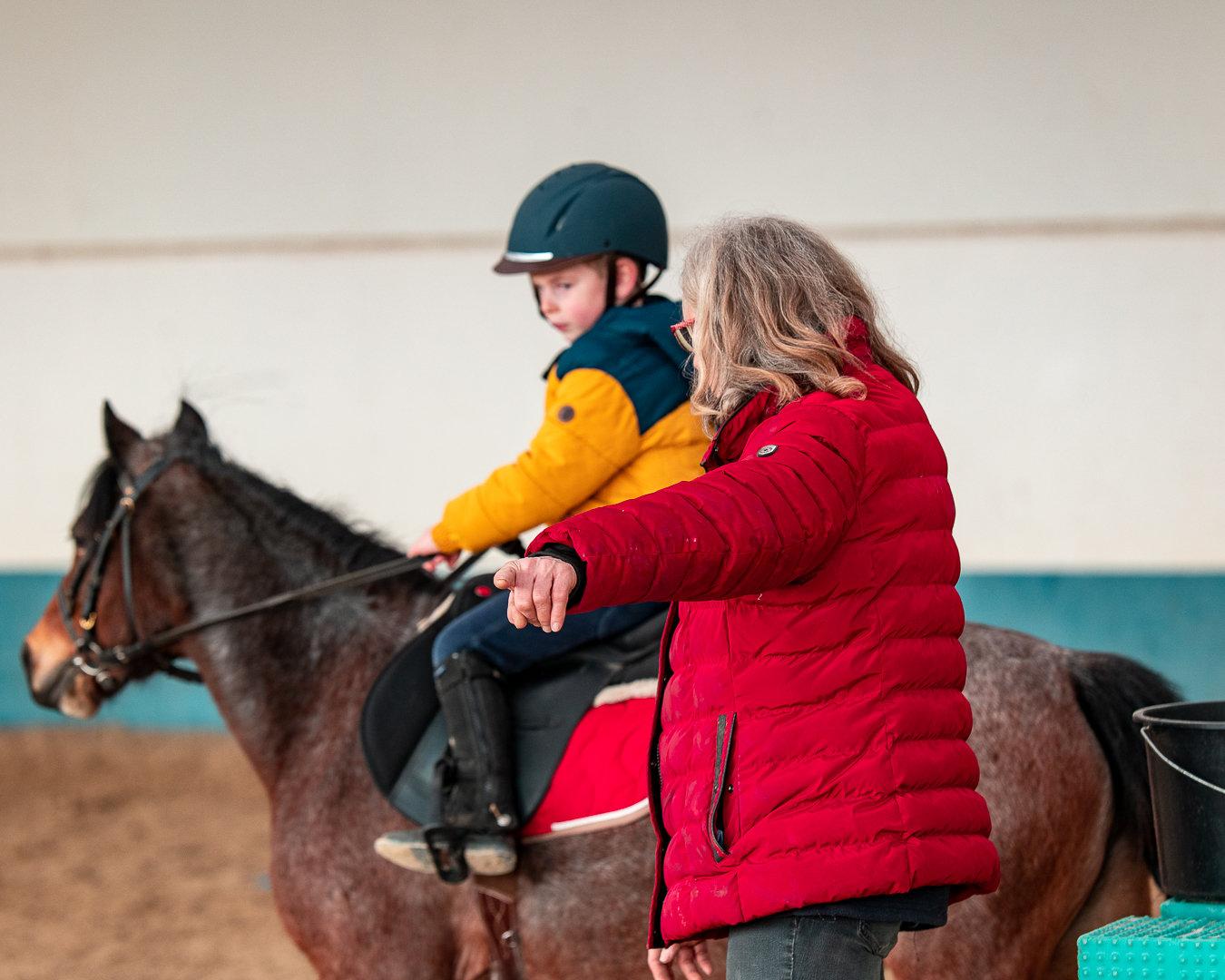Cours d'équitation (DEBUTANT)