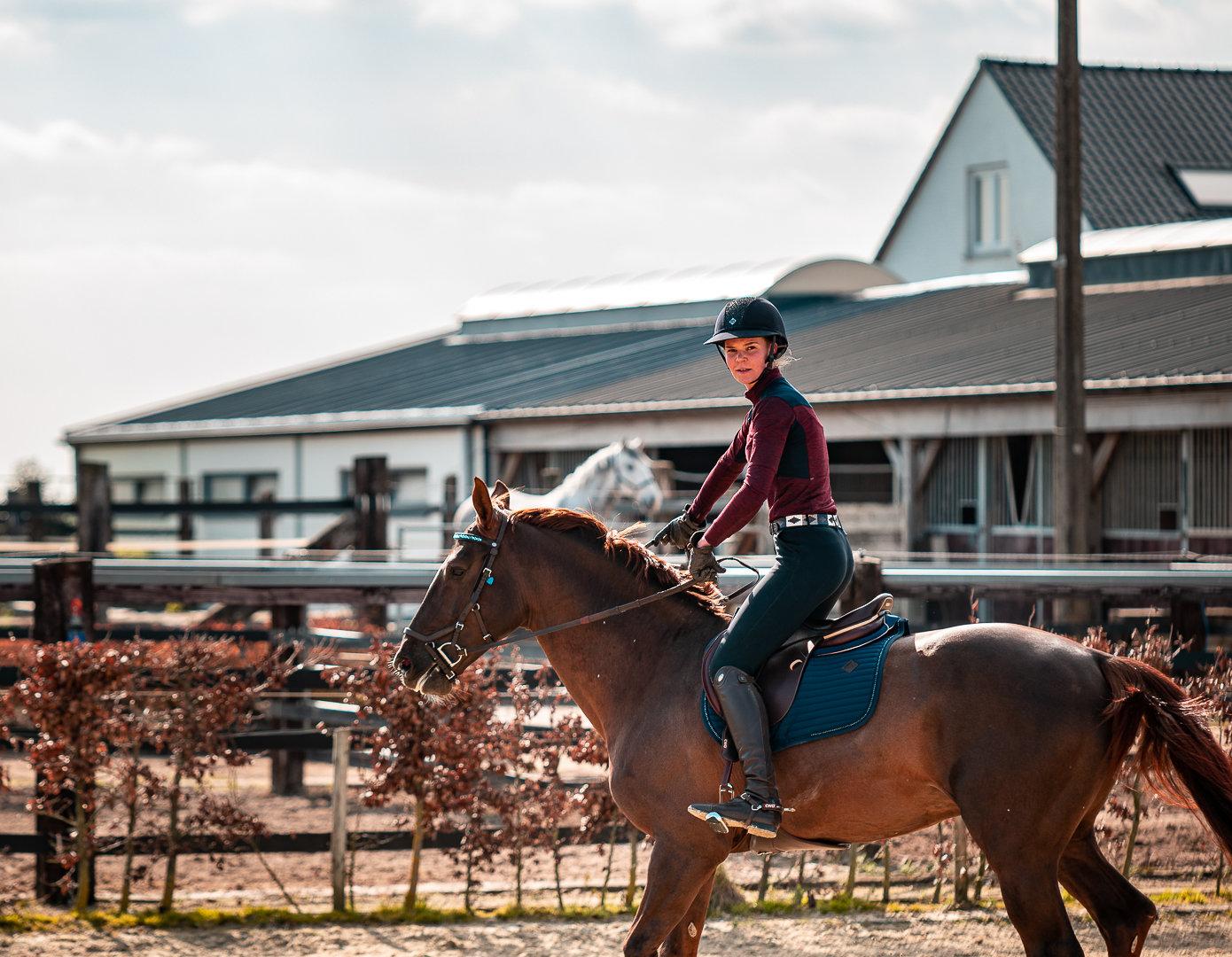 Cours d'équitation (ADULTE)