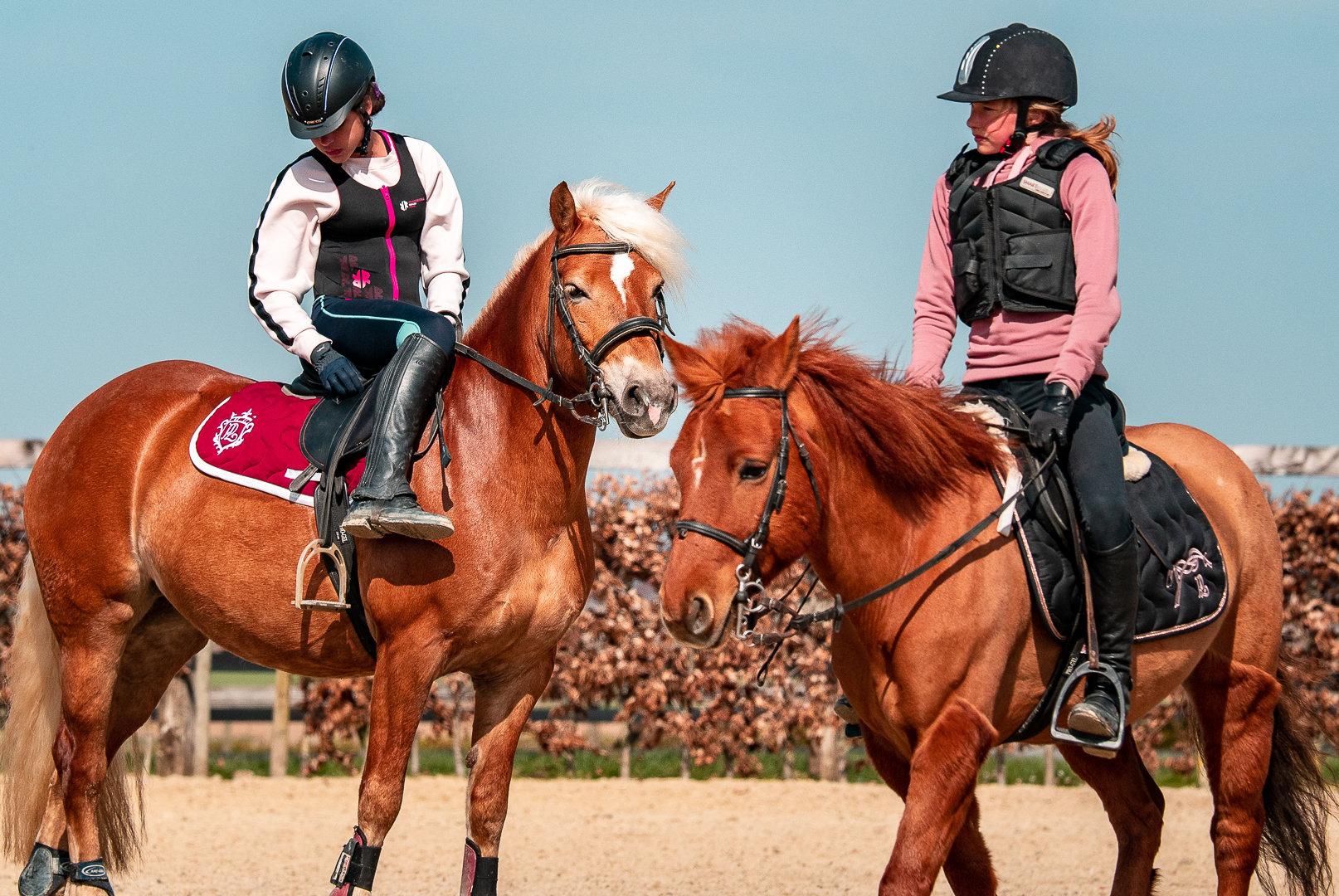 Cours d'équitation (JUNIOR)