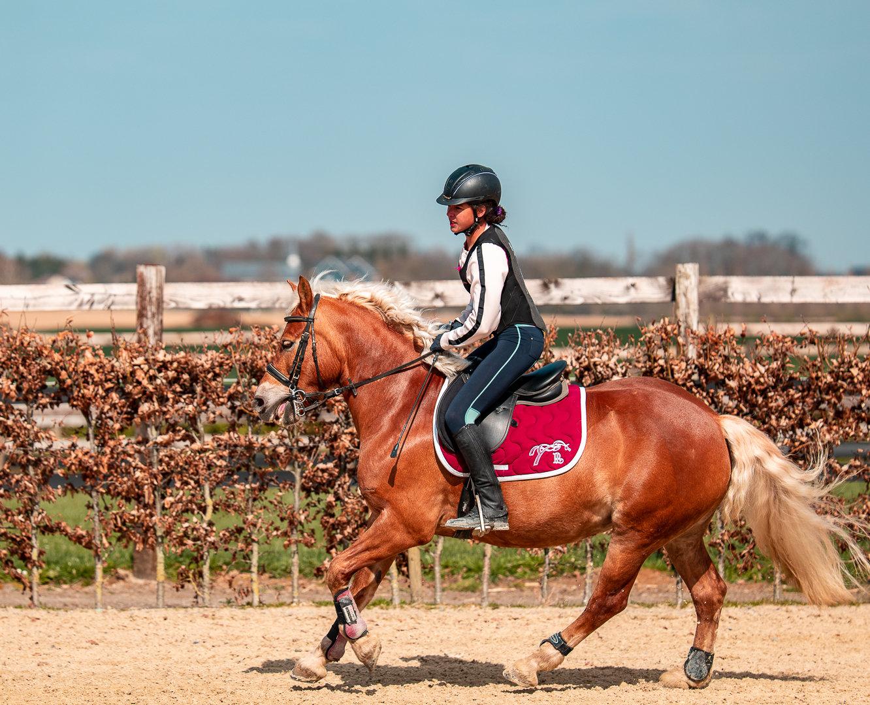 Cours d'équitation (JUNIOR +)
