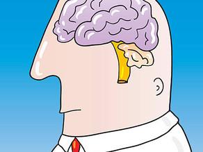 Психические заболевания и трудовые вопросы при диагностике и увольнении