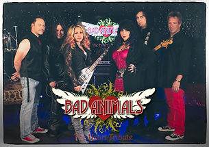 bad-animals-heart-tribute-band-long-isla