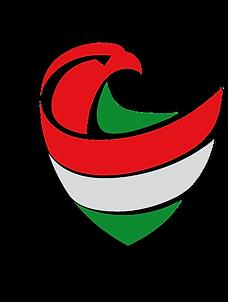 Zrinyi2016_logo_edited_edited.png