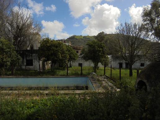 Pool area and ochard area