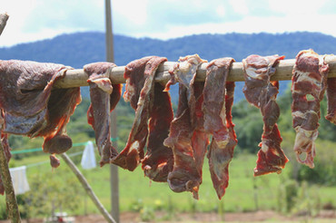 The traditional way of drying and curing meats for the Makushi tribe in the northern Amazon. These pieces were used in a preserved cassava based curry called pepperpot.