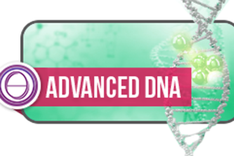 Formation 2 Advanced DNA