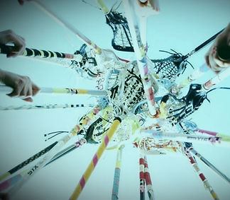 Mission | TEAM Lacrosse Academy