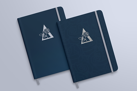 DFL Notebooks.png