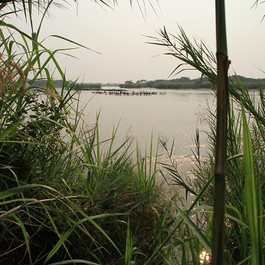 Burundi-nord-du-Tanganyika.jpg