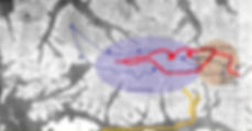 ca-darwinrealisemap.jpg