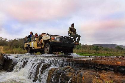 Amakhosi Game Reserve