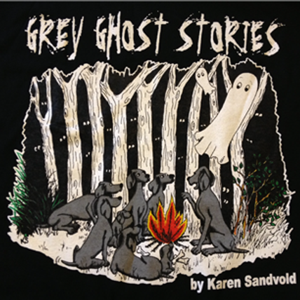 Gray Ghost Stories T-shirt