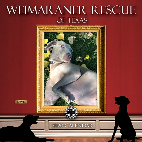 2020 Weimaraner Rescue of Texas Calendar