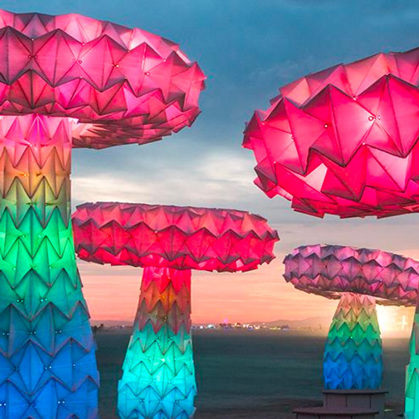No Spectators: The Art of Burning Man