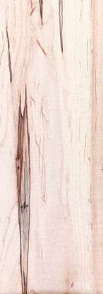 Ambrosia Maple