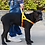 Thumbnail: DODOPET BIG DOG ANTI-PULL HARNESS WITH HANDLE