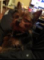 微信图片_20190510231549_已編輯.png