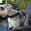 Thumbnail: KELLYPET NO PULL COMFORTABLE DOG HARNESS