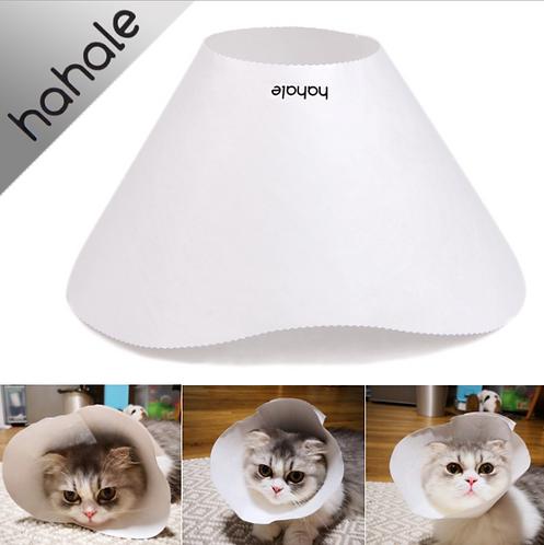 HAHALE PAPER ELIZABATH CONE FOR CAT