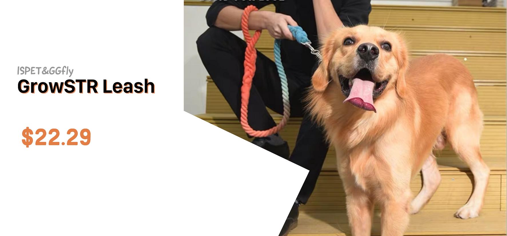 Ispet cotton leash