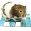 Thumbnail: GGfly Small Pet Essential