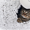 Thumbnail: ZEZE SIGNITURE LAMB CAT TREE