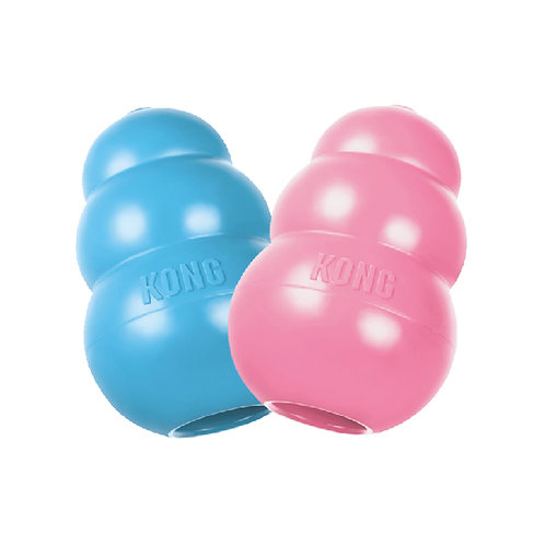 KONG Puppy Toy - Treat Dispensing (COLOR VARIES)