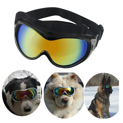 Dog gaggle with uv protection- for