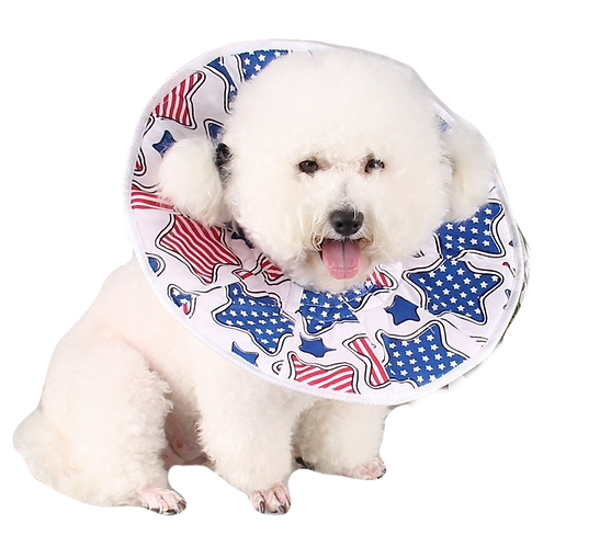 PROTECTIVE DOG ELIZABATH CONE PURE COTTON MAKING SPECIALY MADE FOR PUPPY