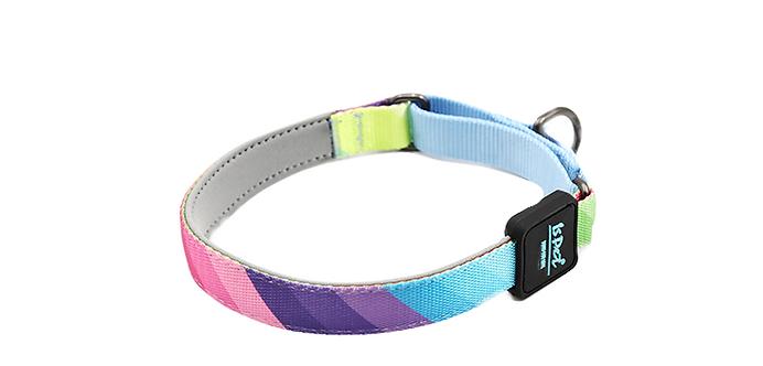 ISPET CoolPRINT P Collar -Rainbow