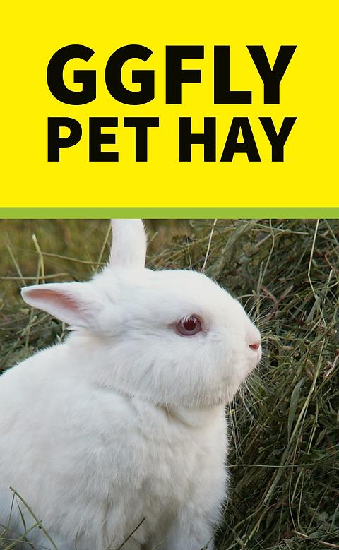 FAYSPETHAY Premium Organic Pet Hay | Free Sample | Timothy Mix Hay