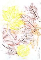 leaf-rubbing-collage_edited.jpg