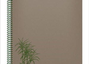 Cuadernola Ecológica +Caña 84 hojas