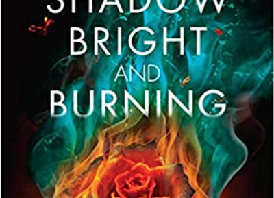 A Shadow Bright and Burning de e Jessica Cluess