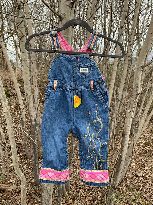 Flower Stems and Ladybugs on Oshkosh Baby Overalls