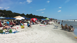 Hilton Head Island's Beaches